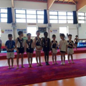 Trofeo Mignon Artistica